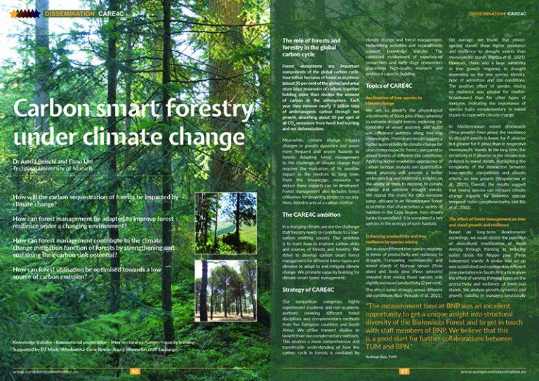 Carbon smart forestry under climate change
